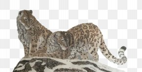 Two Cats On The Top Of The Mountain - Snow Leopard Cheetah Cat PNG