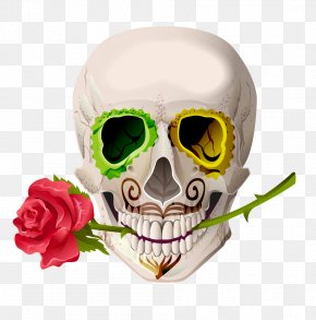 Vector Red Rose Skeleton Skull Head - Skull Cinco De Mayo Euclidean Vector Illustration PNG