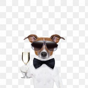 White Male Dogs Toast - French Bulldog Pug Cocktail Martini Puppy PNG