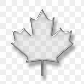 Maple Leaf Background - Maple Leaf Canada Clip Art PNG