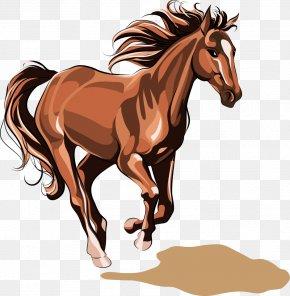 Horse - Horse Chinese Zodiac Stock Illustration Illustration PNG