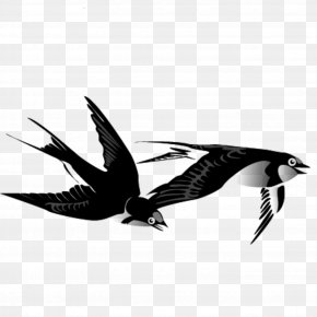 Swallow - Swallow Bird Ink Wash Painting Chinese Painting PNG
