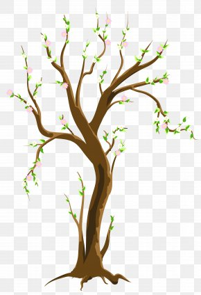 Spring Trees Cliparts - Tree Spring Clip Art PNG