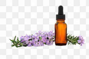 SPA Lavender Essential Oil - Essential Oil Lavender Oil Aroma Compound Aromatherapy PNG