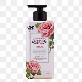 South Korea's LG Perfume Body Lotion - Lotion Perfume The Body Shop Moisturizer Cosmetics PNG