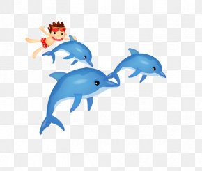 Dolphin - Dolphin Cartoon Clip Art PNG