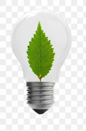 Energy Saving Light Bulbs - Incandescent Light Bulb Energy Conservation PNG
