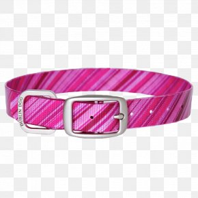Dog Collar - Dog Collar Pink-collar Worker Blue-collar Worker PNG