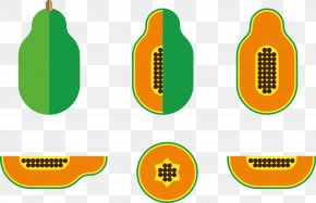Vector Illustration Of Papaya - Papaya Vecteur Illustration PNG