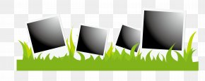 Vector Black And White Frame With Grass Edge - Instant Camera Clip Art PNG