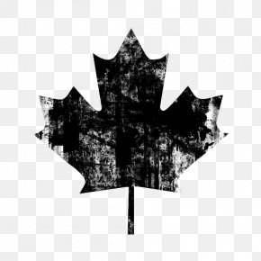 Maple Leaf Background - Flag Of Canada Maple Leaf PNG
