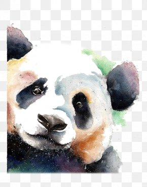 Giant Panda - Giant Panda Bear Watercolor Painting Drawing PNG
