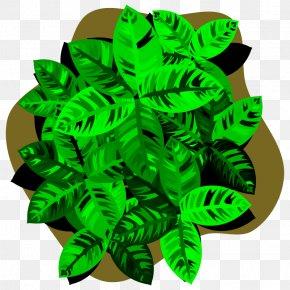 Leaf - Tattoo Clip Art Four-leaf Clover Shamrock Saint Patrick's Day PNG