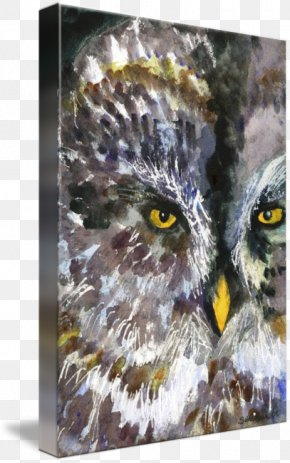 Watercolor Painting Animals - Owl Watercolor Painting Art Drawing PNG