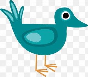 Green Pigeon - Bird Duck Adobe Illustrator Clip Art PNG
