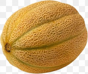 Netted Melon - Cantaloupe 2011 United States Listeriosis Outbreak Honeydew Watermelon PNG