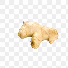 Ginger - Ginger Root Vegetables Icon PNG