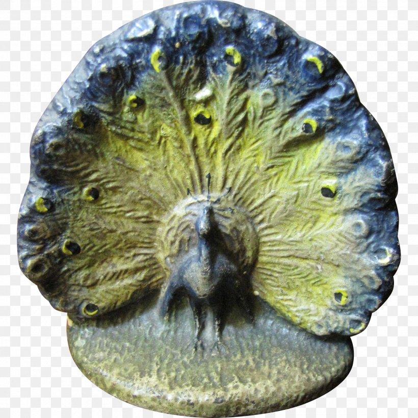 Organism Invertebrate, PNG, 1901x1901px, Organism, Invertebrate Download Free
