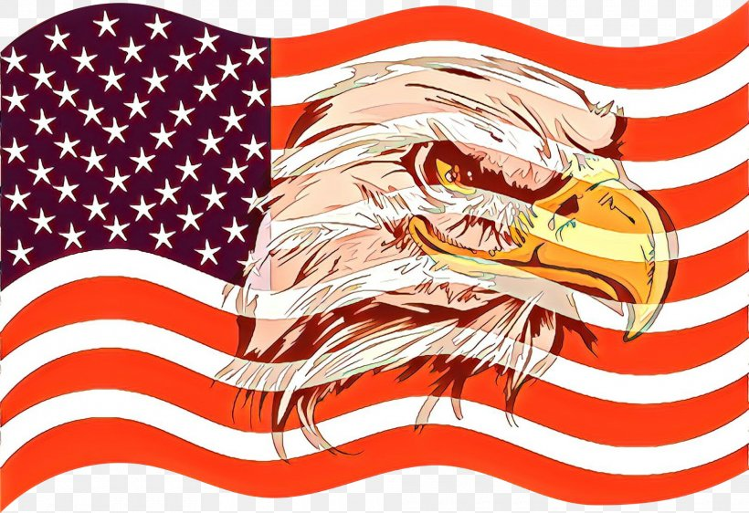 Veterans Day Veteran Soldier, PNG, 1920x1316px, Cartoon, Accipitridae, Accipitriformes, Bald Eagle, Beverly Public Library Download Free