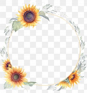 Picture Frame Daisy Family - Picture Frame PNG