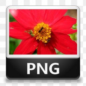 File Type Icon - JPEG File Interchange Format PNG