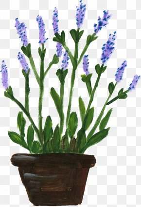 Flower Pot - English Lavender Lavandula Dentata French Lavender Flowerpot PNG