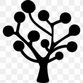 Tree - Decision Tree Icon Design PNG