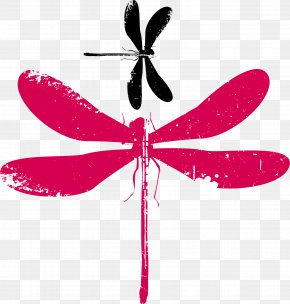 Vector Dragonfly - Insect Euclidean Vector Adobe Illustrator PNG