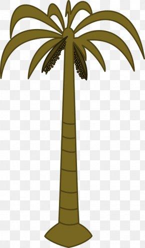 Coconut Tree - Arecaceae Tree Date Palm Coconut Clip Art PNG
