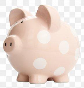 Piggy Bank - Domestic Pig Piggy Bank Saving Trade PNG