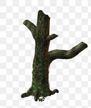 Root - 3D Trees Trunk Clip Art PNG