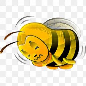Bee - Bee Euclidean Vector Icon PNG