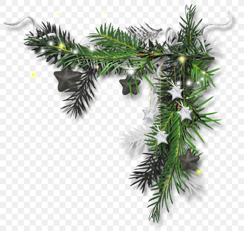 Christmas Ornament Candy Cane Christmas Tree The Maxwell Club, PNG, 800x778px, Christmas Ornament, Alabama, Borassus Flabellifer, Branch, Candy Cane Download Free