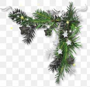 Christmas Tree - Christmas Ornament Candy Cane Christmas Tree The Maxwell Club PNG