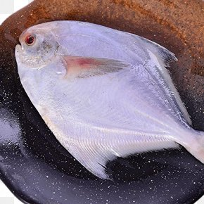 Frozen Butterfish - Fish As Food Seafood Escolar PNG