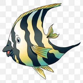 Marine Mammal Marine Biology Fauna Clip Art PNG