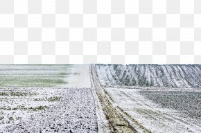 Frost Hit The Grass - Bavaria Stock Photography PNG