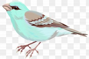 Soft Deco Bird Clip Art - Image File Formats Lossless Compression PNG