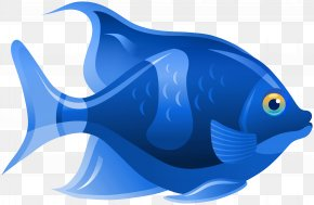 Fish - Clip Art Ray-finned Fishes Vector Graphics Tropical Fish PNG