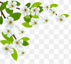 White Spring Branch Clipart Image - Branch Diagram Clip Art PNG