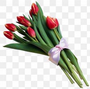 Bouquet Of Red Tulips Transparent Picture - Tulip Flower Bouquet Clip Art PNG