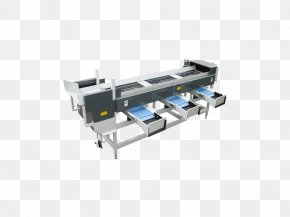 Fruit Logistica - Machine Material-handling Equipment Conveyor System Manufacturing Material Handling PNG