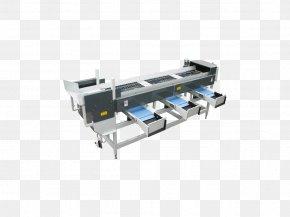 Fruit Logistica - Machine Material-handling Equipment Conveyor System Manufacturing Material Handling PNG