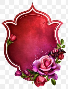 Red Rose Box - Text Box Clip Art PNG