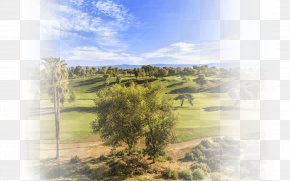 Spring Real Estate Posters - Stock Photography Golf Club Drive PNG