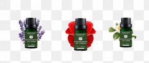 Essential Oils - Essential Oil Bottle Cosmetics PNG