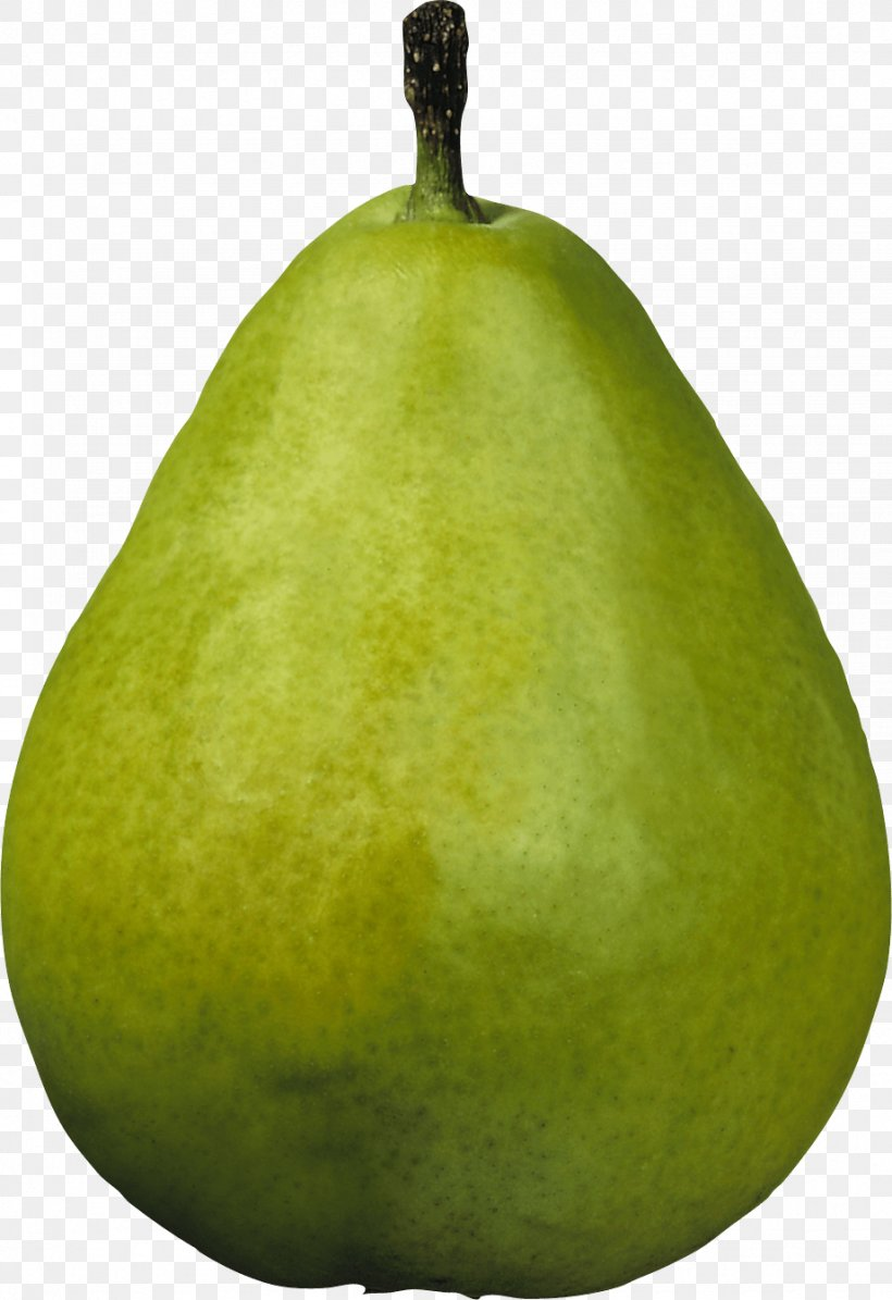 Williams Pear Asian Pear Amygdaloideae, PNG, 921x1343px, Williams Pear, Amygdaloideae, Asian Pear, Callery Pear, Cucurbita Download Free