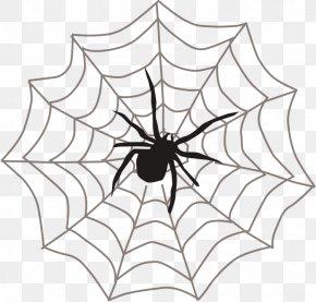 Spider - Spider Web Clip Art PNG