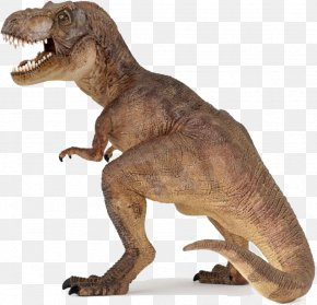 Dinosaur Transparent - Dinosaur Tyrannosaurus Rex Yangchuanosaurus Carnivore PNG