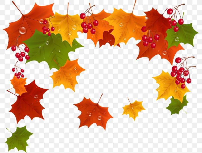 Autumn Desktop Wallpaper Clip Art Png 800x622px Autumn Animation Computer Animation Drawing Flora Download Free